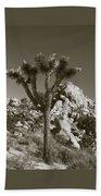 Joshua Tree National Park Landscape No 7 In Sepia Bath Towel