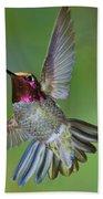 Annas Hummingbird Bath Towel
