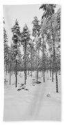 Pine Forest Winter Bath Towel