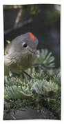 Rubycrowned Kinglet Bath Towel