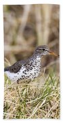 Spotted Sandpiper Bath Towel