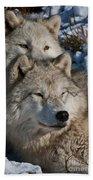 Arctic Wolves Bath Towel