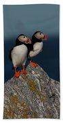 Atlantic Puffins Fratercula Arctica Bath Towel