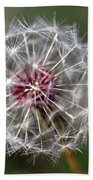 Dandelion Seed Head Bath Towel