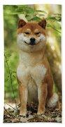 Shiba Inu Dog Bath Towel