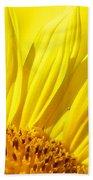 #923 D718 You Are My Sunshine. Sunflower On Colby Farm Bath Towel