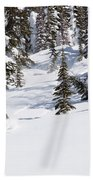 A Backcountry Skier A Turn Near Ymir Bath Towel