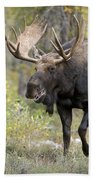 A Bull Moose Named Gaston Bath Towel