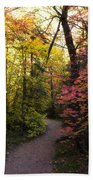 A Colorful Path  Bath Towel