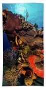 A Colorful Reef Scene With Sunburst Bath Towel