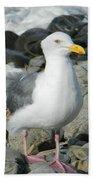 A Curious Seagull Bath Towel