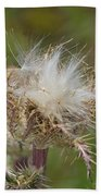 A Feather's Weight In Gold Bath Towel