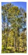 A Forest Glade Bath Towel