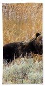 A Grizzily On A Buffalo Carcass Bath Towel