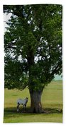 A One Horse Tree And Its Horse Bath Towel