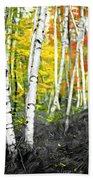 A Painting Autumn Birch Grove Bath Towel