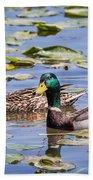 A Pair Of Mallards Bath Towel by Dale Kincaid