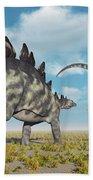 A Pair Of Stegosaurus Dinosaurs Bath Towel