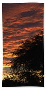 A Phoenix Sunset Bath Towel