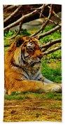 A Real Detroit Tiger Bath Towel