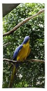 A Single Macaw Bird On A Branch Inside The Jurong Bird Park Bath Towel