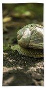 A Snail's Pace Bath Towel