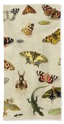 A Study Of Insects Bath Towel