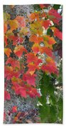 A Touch Of Autumn Bath Towel