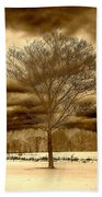 A Tree At Appleton Bath Towel