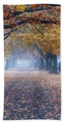 A Walk In Salem Fog Bath Towel