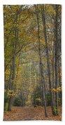 A Walk In The Woods II Hand Towel
