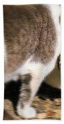 A Wild Cat Catching A Chipmunk Bath Towel