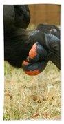 Abyssinian Ground Hornbill Bath Towel