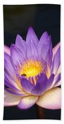 Accents On A Purple Waterlily... Bath Towel