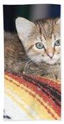 Adorable Kitten Bath Towel