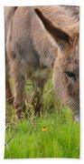 Adorable Mini-burro Bath Towel