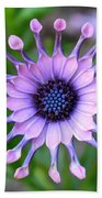 African Daisy - Square Format Bath Towel
