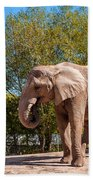African Elephant 2 Bath Towel