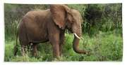 African Elephant Grazing Serengeti Bath Towel