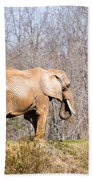 African Elephant On A Hill Bath Towel