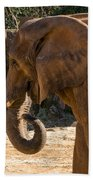 African Elephant Profile Bath Towel