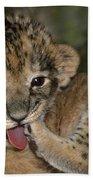African Lion Cub Wildlife Rescue Bath Towel