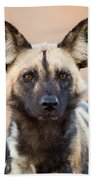 African Wild Dog Bath Towel