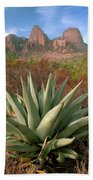 Agave And The Chisos Mountains Bath Towel