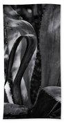 Agave Black And White Dsc08571 Bath Towel
