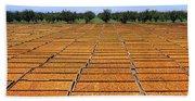 Agriculture - Blenheim Apricots Bath Towel