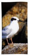 Alabama Tern Bath Towel