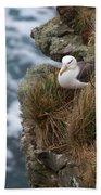 Albatross Rookery Bath Towel