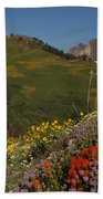 Albion Basin Summer Bath Towel
