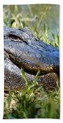 Alligator Smiling Bath Towel
